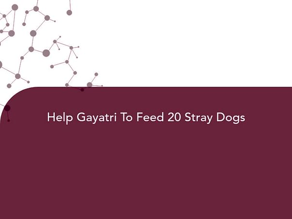 Help Gayatri To Feed 20 Stray Dogs