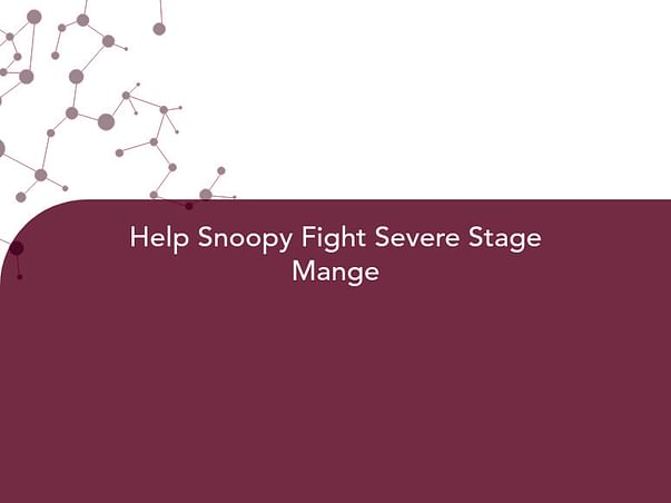 Help Snoopy Fight Severe Stage Mange