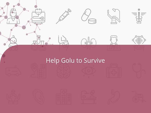 Help Golu to Survive 🙏