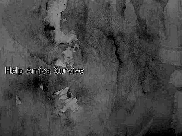 Help Amiya Survive