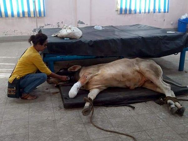 We won't be able to help them, if we don't get any help soon! 😫
