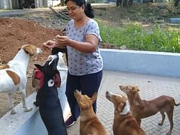 Help Sangeeta And Ravi Build A Forever Home For Their 50+ Street Dogs