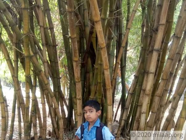Help Aman Recover From Aplastic Anemia