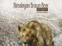 Himalayan Brown Bear Conservation in Zanskar