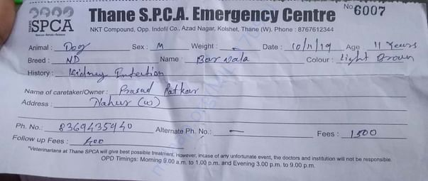 OPD Receipt of Thane SPCA for first four days