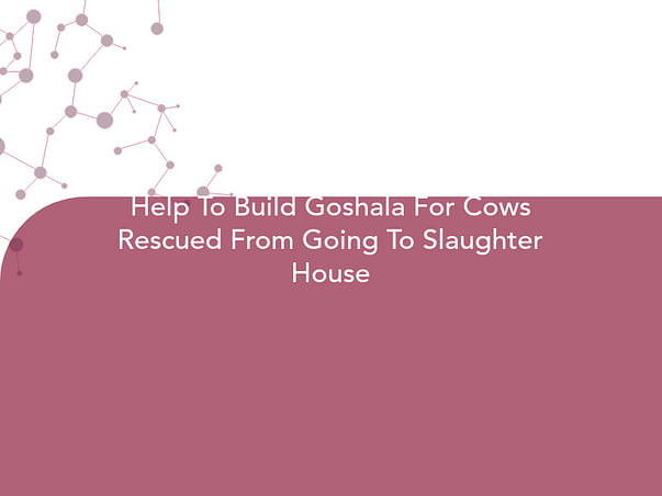 Help To Build Goshala For Cows Rescued From Going To Slaughter House
