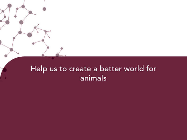 Help us to create a better world for animals
