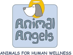 Animal Assisted Therapy For Special People
