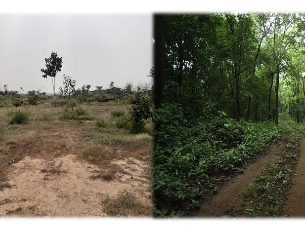 Creating Aravalis Bio-Diversity Parks