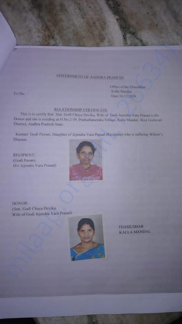 Transplantation supporting documents
