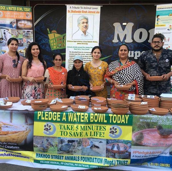 Pledge a water bowl campaign