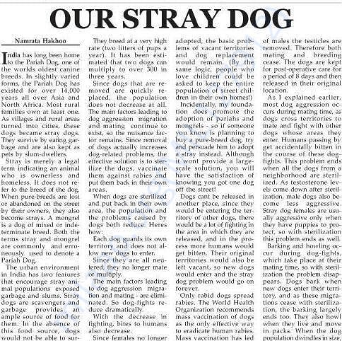 Newspaper articles written by us