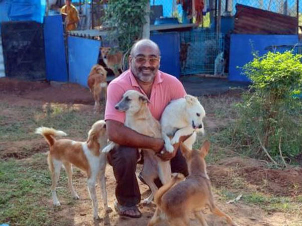 Help Surya and Anju Singh Build a Forever Home for 300+ Dogs