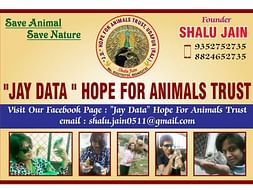 Support us in Conserving Wildlife