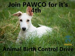 Help us raise money for our 4th Animal Birth Control Camp