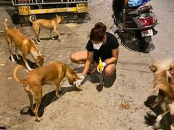 Help provide nightly meals to the stray animals of Mumbai