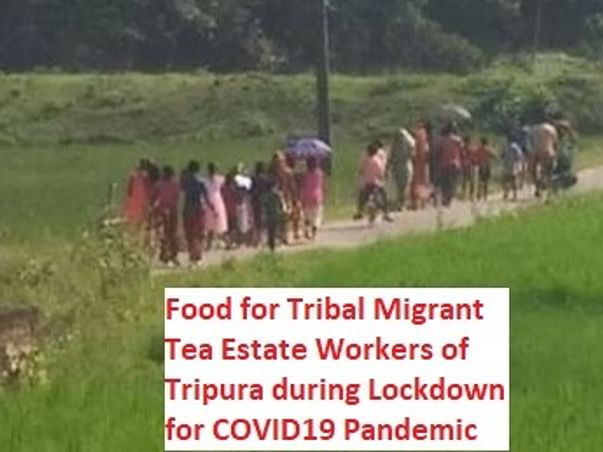 Food For Migrant Tribal Tea Estate Workers- COVID19 Pandemic Relief