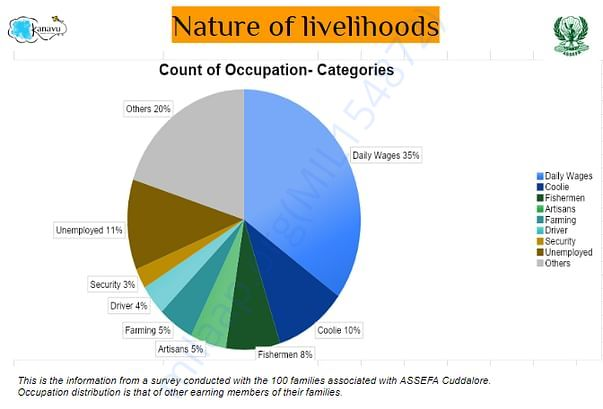 Landscape of livelihoods of the 100 families
