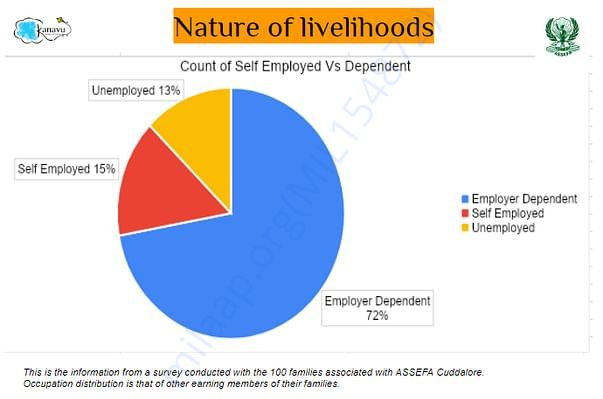 Landscape of livelihoods of the 100 families_Part 2