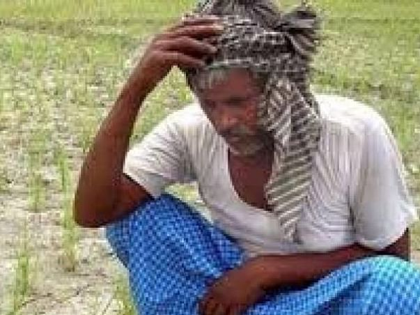 I want to help 100 farmer for this time COVID19