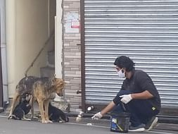 Help the strays and underprivileged of India😊