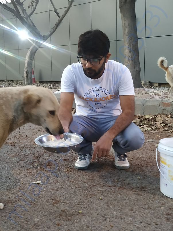 Feeding stray kids during lockdown