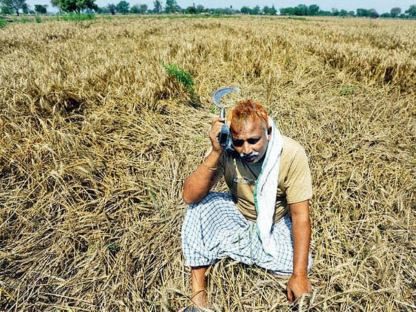 Farmers  Seeking Your Help To Overcome Financial Loss Due To Covid-19