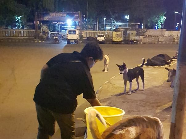 Help Sucheta To Continue Feeding 600 Dogs During This Lockdown Period