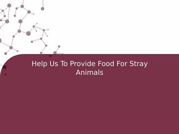 Help Us To Provide Food For Stray Animals