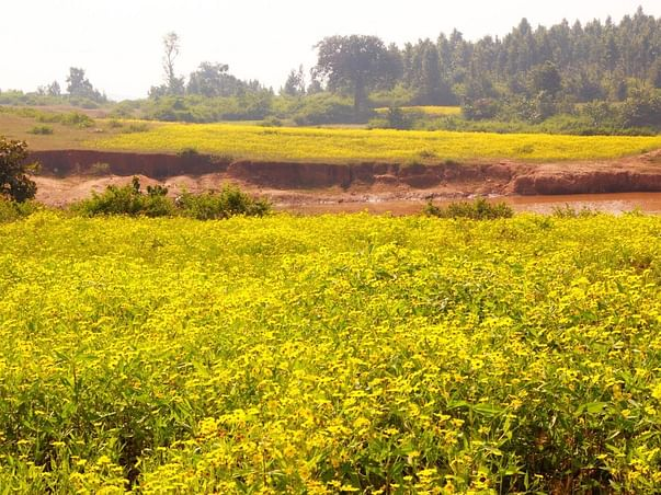 Help the struggling farming community of Tamil Nadu