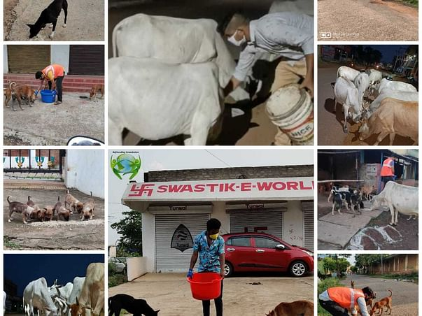 Help poor & animals to fight against COVID19 during the lockdown.
