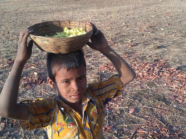 Helping Hands for Displaced Tribes of  Melghat Tiger Reserve