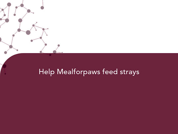 Help Mealforpaws feed strays