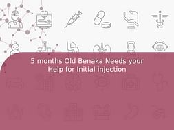 5 months Old Benaka Needs your Help for Initial injection