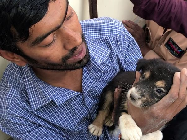 Support Pradeep Nair Who Has Rescued 70000 Injured Animals