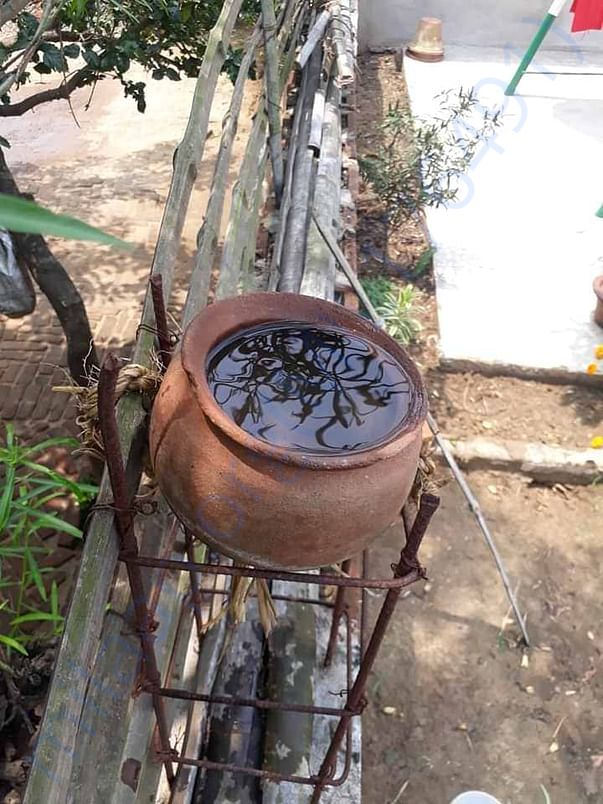 Water for Birds in earthen pot which keep water cold