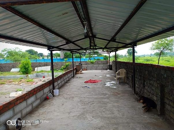 Petluck Animal Rehabilitation Center