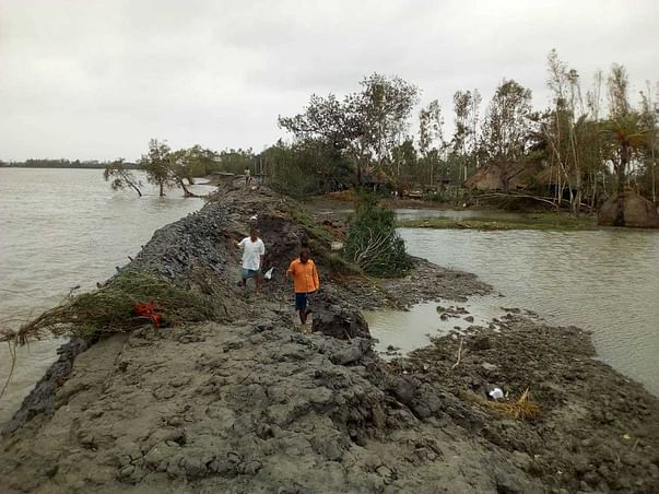 Restoring the Mangroves & the Uncharted Delta after Amphan