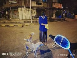 #Tofeedandquenchthethirst Help Me Raise Funds For Stray Dogs & Myself!