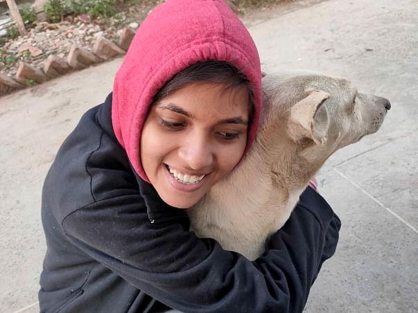 help Lakshmi to feed stray animals