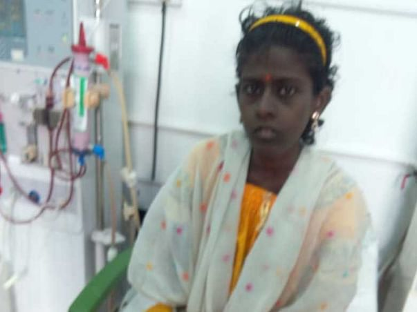 Help animalar to come back from cataract operation  &kidney transplant