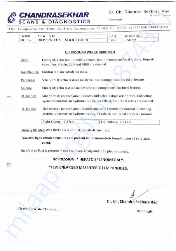 Mohammad Arfha Medical reports.