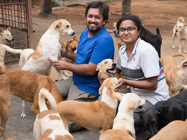 Help Sajesh to rescue and rehabilitate thousands of injured dogs