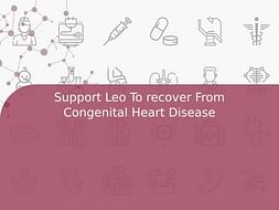 Support Leo To recover From Congenital Heart Disease