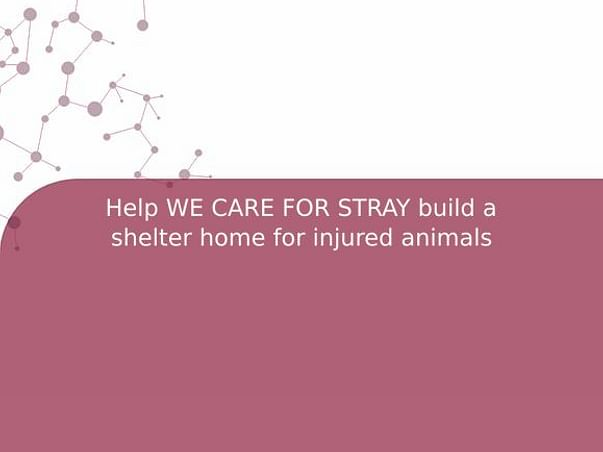 Help WE CARE FOR STRAY build a shelter home for injured animals