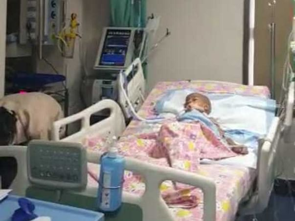3 Years Old Shanmugha Needs Your Help To Fight Brain tumor
