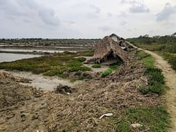 Help the locals of Sundarban recover from Amphan's damage