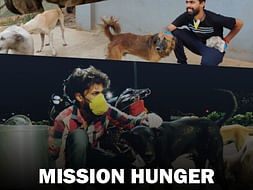 Mission Hunger Feeding Street Dogs