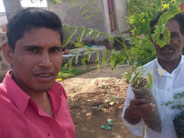 Donate 5 Trees And Save Earth Environment