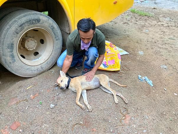 PACT Foundation Shelter Management Support